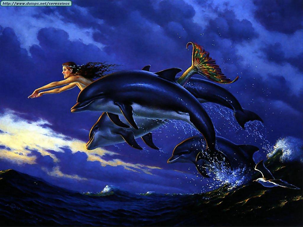 Fotos de ballenas y orcas (I)