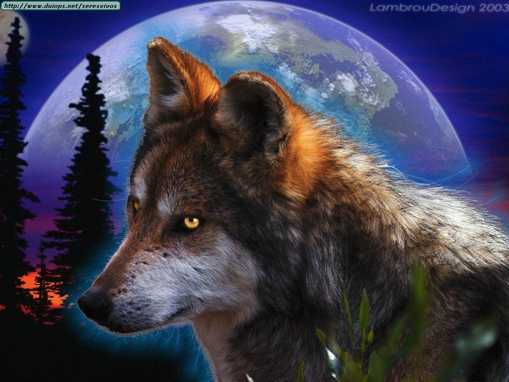 Aullidos espectaculares de lobos e imagenes.